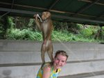Nezbedný makak chvilku neposeděl