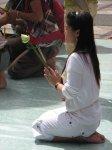 ...a taktéž u soch Budhy nechávají lotosová poupata